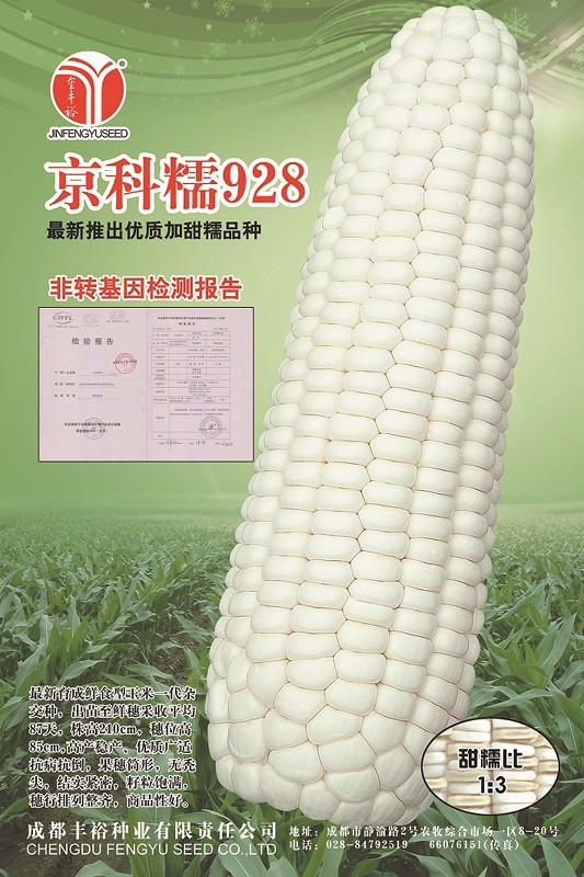 果实 蔬菜 植物 种子 533_800 竖版 竖屏